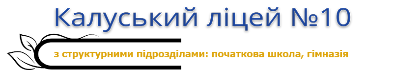 Калуський ліцей № 10 Logo